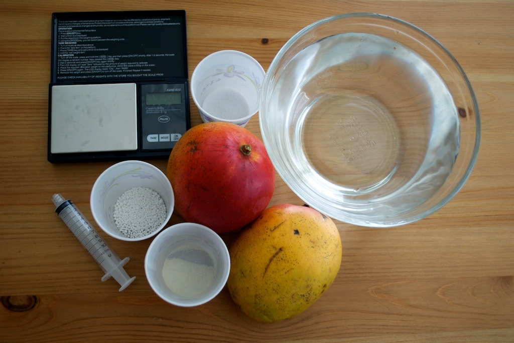 Ingredients for mango ravioli.jpg