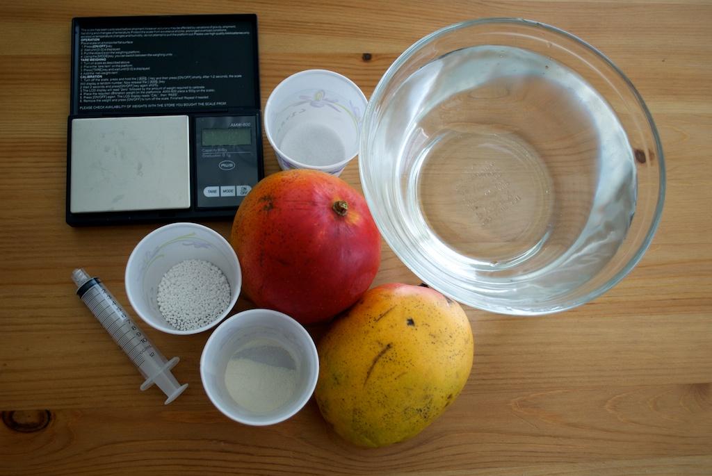 Ingredients for mango ravioli.jpg
